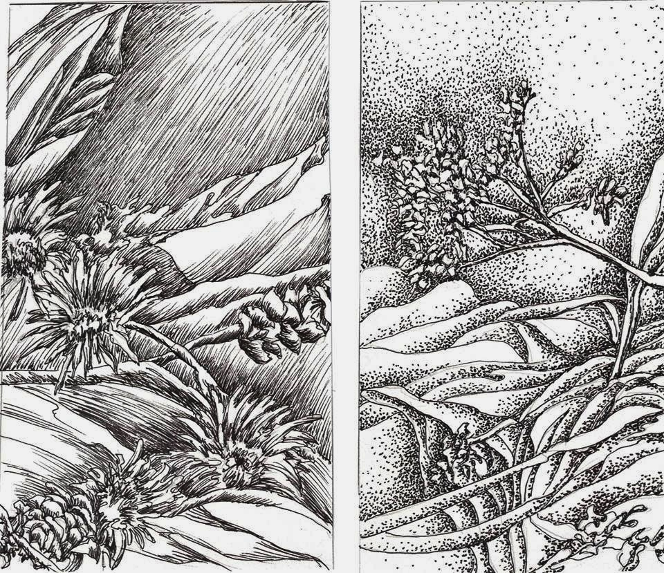 Drawing Scribble Technique : Scribble gradation technique dr mary mcnaughton and drawing